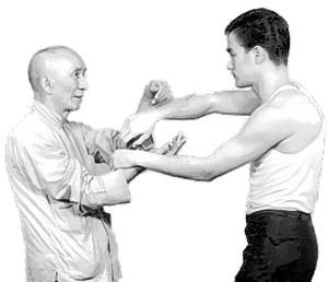 Ip Man (Yip Man) and Bruce Lee Chi Sao